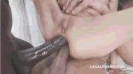 Free anal - porn GIFs