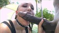 Mandingo dick - porn GIFs