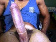 Mega cock - porn GIFs