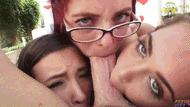 Triple blowjob - porn GIFs
